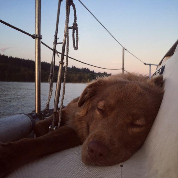 Sleepy Leonard